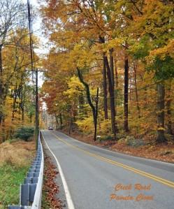 Creek Road Glen Mills