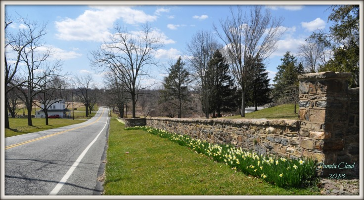 Glen Mills Road
