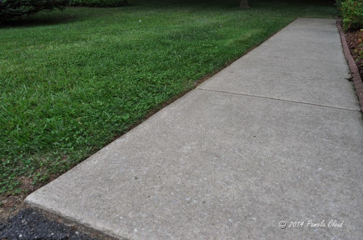 Curb appeal at entrance